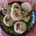 Oatmeal cranberry raw scones