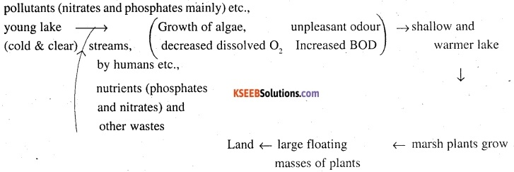 2nd PUC Biology Question Bank Chapter 16 Environmental Issues 3