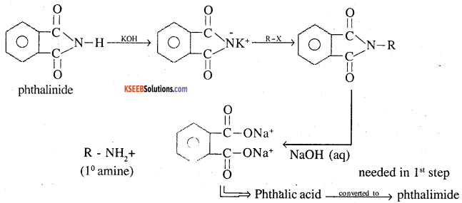 2nd PUC Chemistry Question Bank Chapter 13 Amines - 11