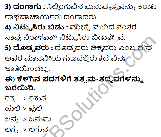 Tili Kannada Text Book Class 8 Solutions Gadya Chapter 5 Blood Group 13