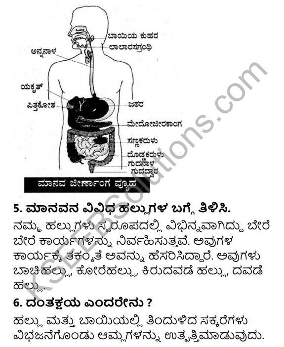 KSEEB Solutions for Class 7 Science Chapter 2 Pranigalalli Poshane 10