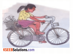 KSEEB Solutions for Class 4 English Chapter 3 Environment 35