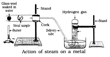 KSEEB SSLC Class 10 Science Solutions Chapter 3 Metals and Non-metals 5
