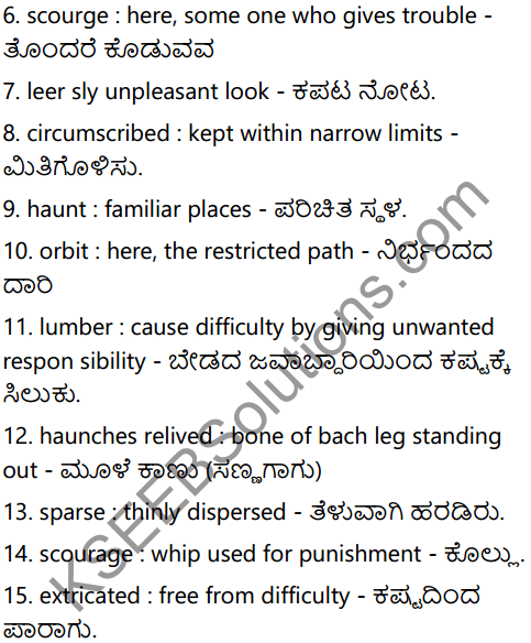 The Blind Dog Summary in Kannada 3