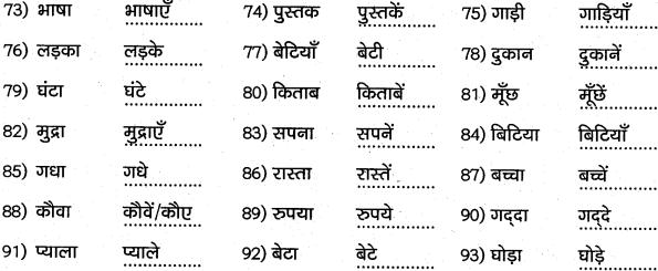 1st PUC Hindi Workbook Answers व्याकरण वचन 4
