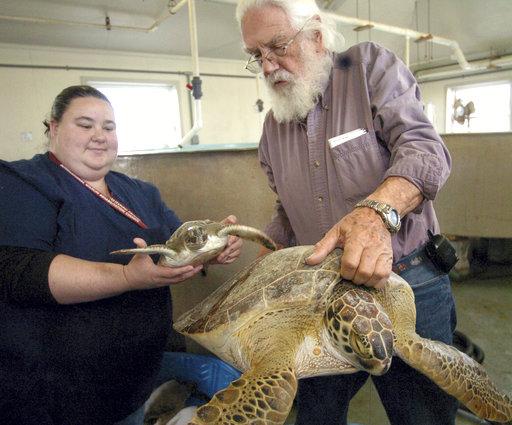 Harvey Sea Turtle Funeral_454307