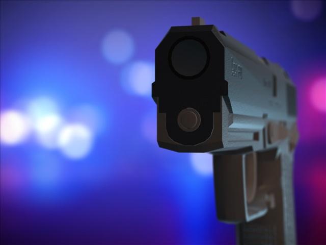 Gun Law Changes_116185