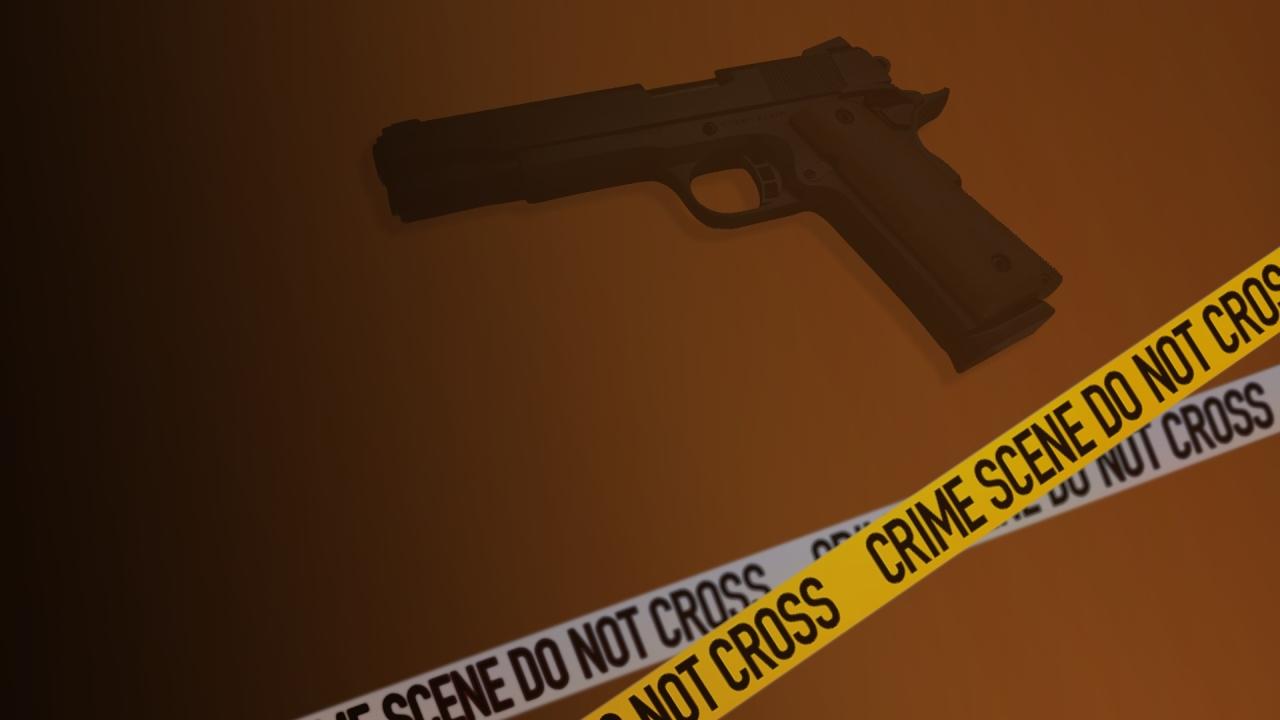 gun, shooting, graphic, generic (AP)_203160