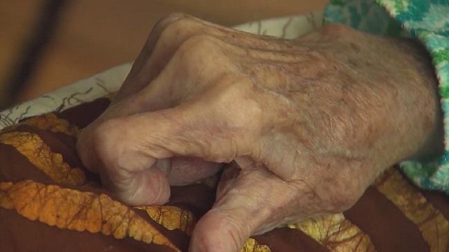 hopsice, elderly, nursing home, old_182564