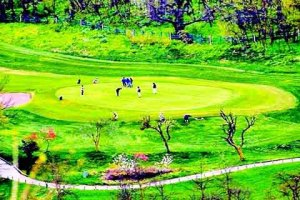 RSGC Srinagar abuzz with golfers