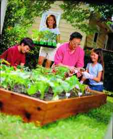 Continue The Benefits Of Vegetable Gardening Into The Fall