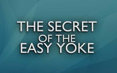 The Secret of the Easy Yoke