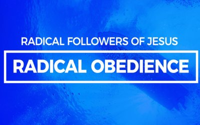 Radical Obedience