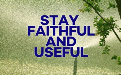 Remain Faithful and Useful
