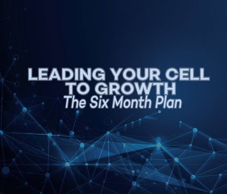 Leading Your Cell to Growth – The Six Month Plan