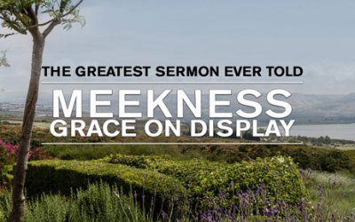 Meekness: Grace on Display