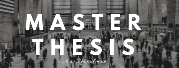 FAQ: Master Thesis – How did you find one in an organisation?
