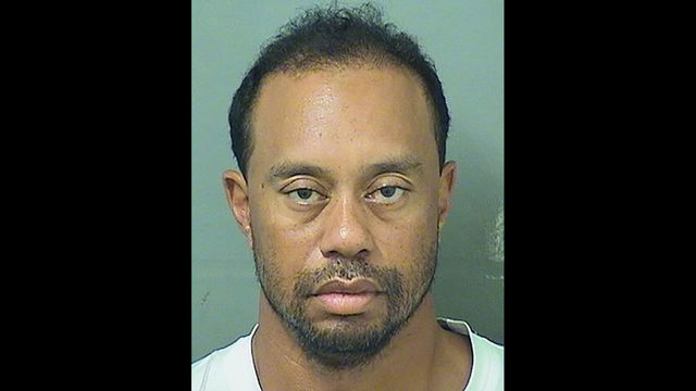 Tiger Woods booking photo_1496073754534_249552_ver1.0_640_360_1496079314735.jpg