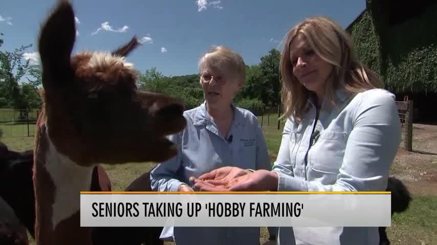 Seniors Take Up Hobby Farming_19530912