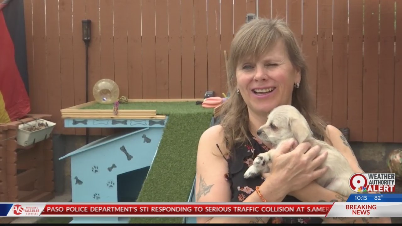 Star volunteer fosters more than 200 shelter animals in six years