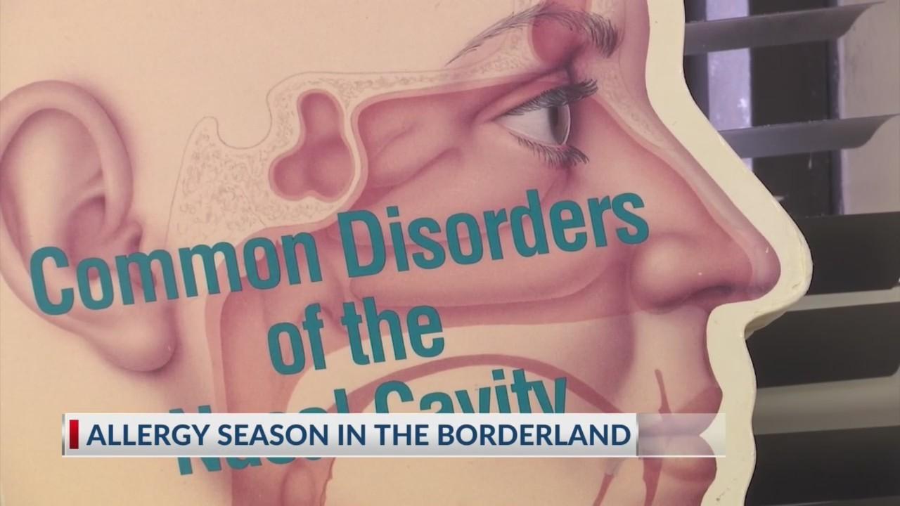 Allergy season picking up in the Borderland