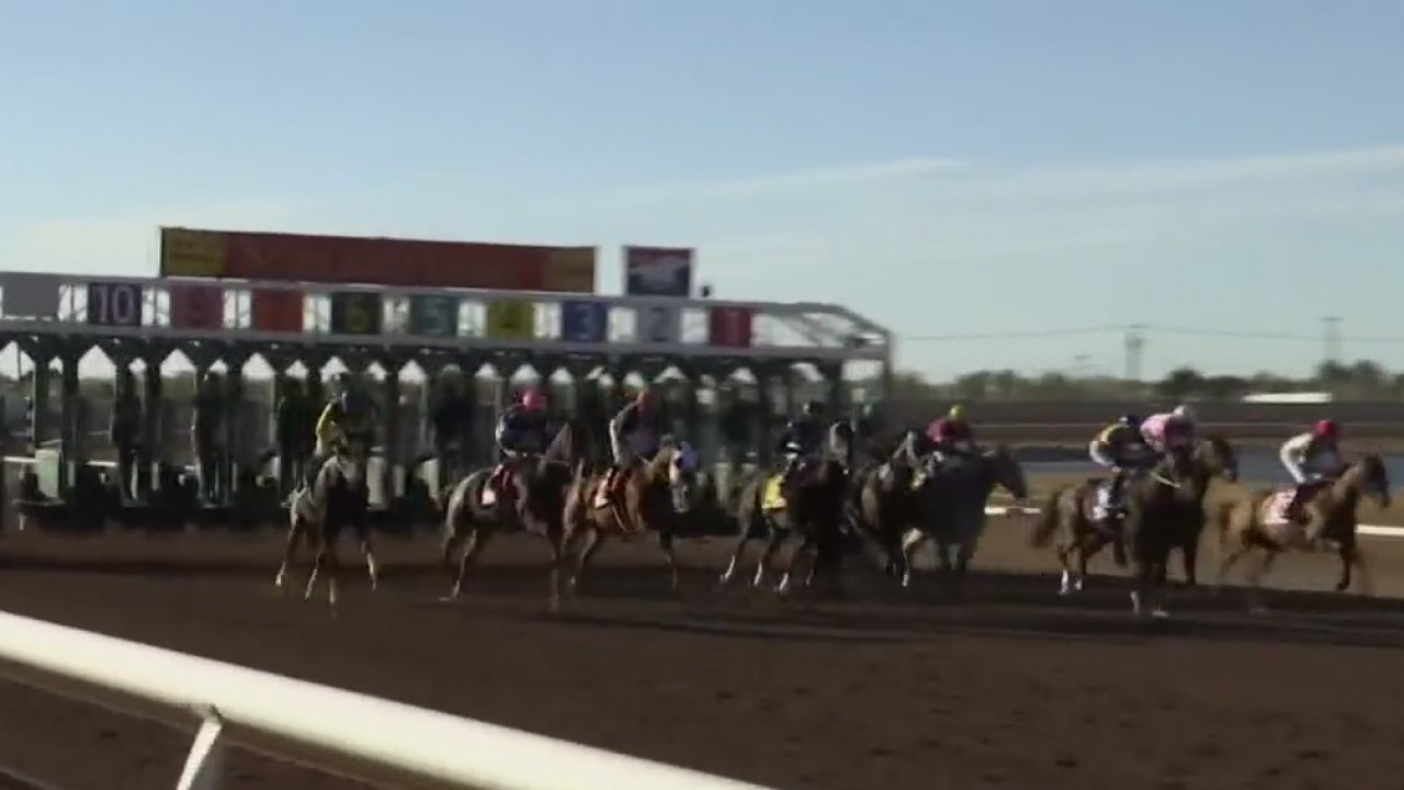 Horse racing expert discusses Kentucky Derby