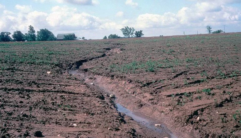 Conservation compliance change requires treating gully erosion on highly erodible land