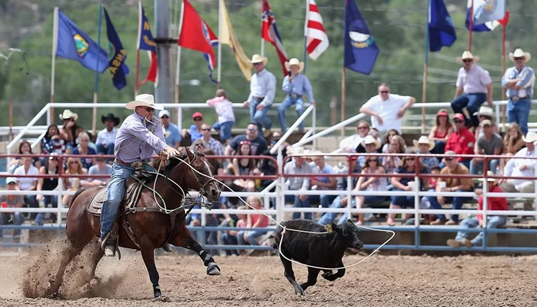 Rodeo to be held in Milan this weekend