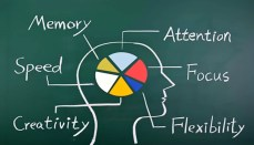 Brain and memory Fitness