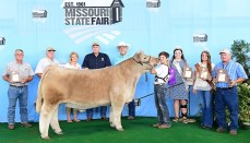 Gage Baker winds Grand Champion Market Steer Missouri State Fair