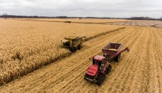 Farm Machinery or combine or tractor or wheat field or harvest or farm crop or corn