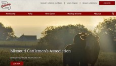 Missouri Cattlemen's Association Website