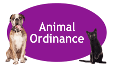 Animal Ordinance