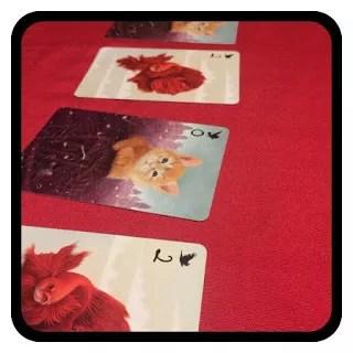 Sen_odkryte karty