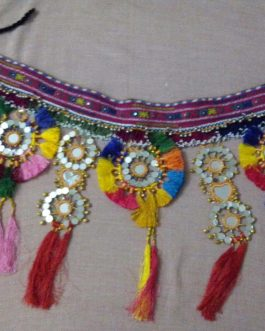 Pashori Flower and Mirror Belly-dance Belt