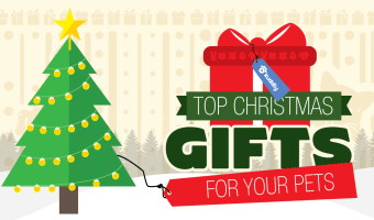 Top Christmas Gifts for Pets
