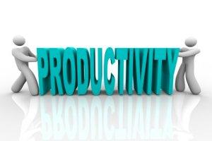 符合人体工程学,提高生产力和利润