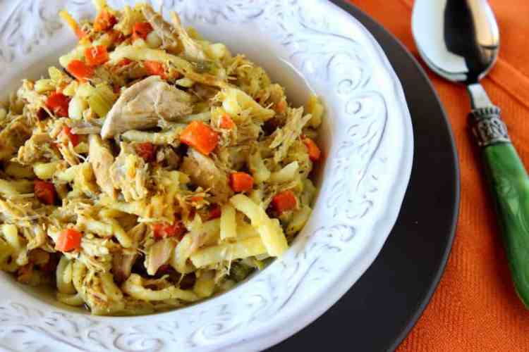Carrot Ginger Chicken Noodle Stew