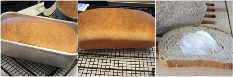 Whole Wheat Honey Ricotta Yeast Bread