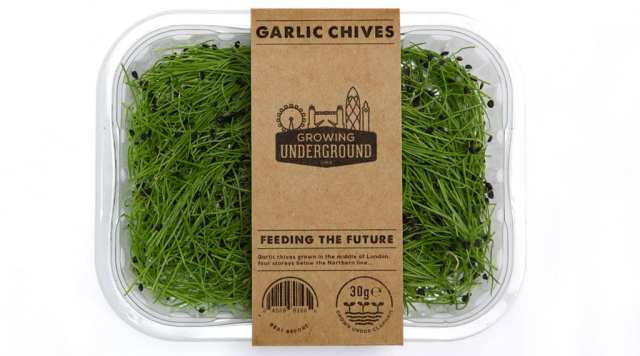 garlic-chives-box
