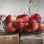Ruokakriisissä ja maailman tuskassa