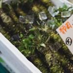 Kioton ruokakulttuuri