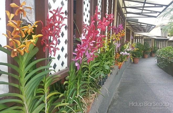 melawat ke taman orkid kuala lumpur