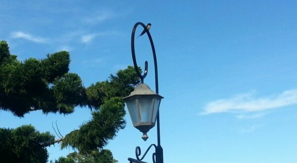 Jerai Hill Resort – Kenangan Setahun