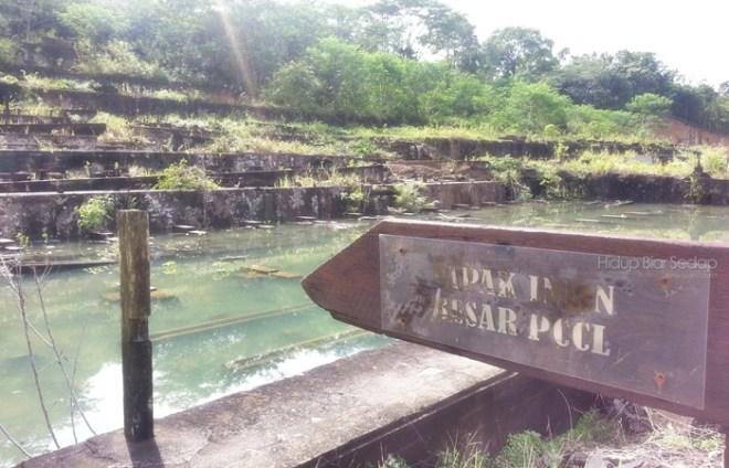 tapak muzium sungai lembing