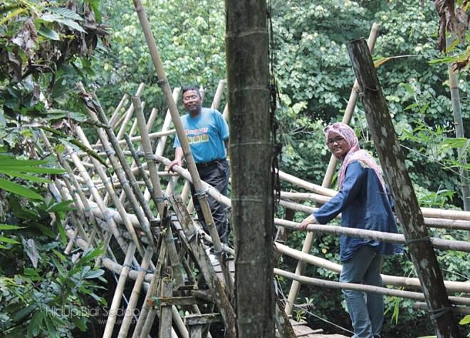 jambatan buluh homestay kampung benuk