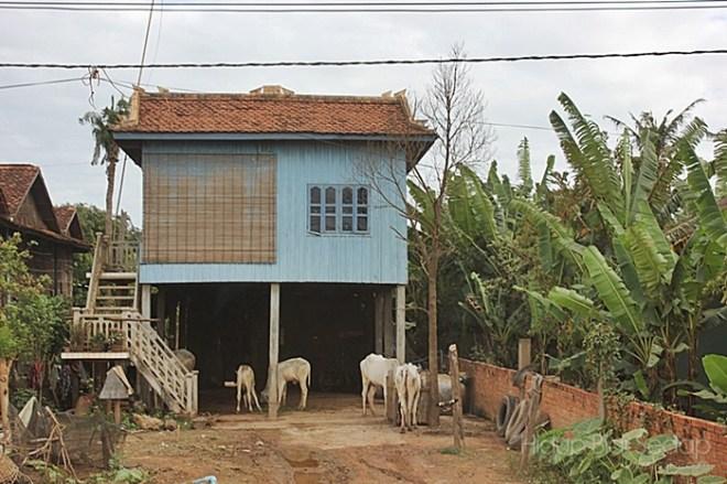 rumah-di-kemboja