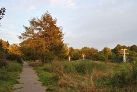 thomasfriedhof