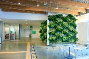 Downtown-Market-Indoor-Vertical-Garden