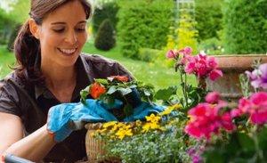 Dar atención a las plantas